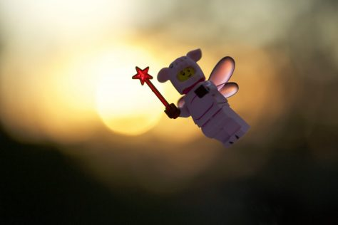 Pigs can fly, sunrise
