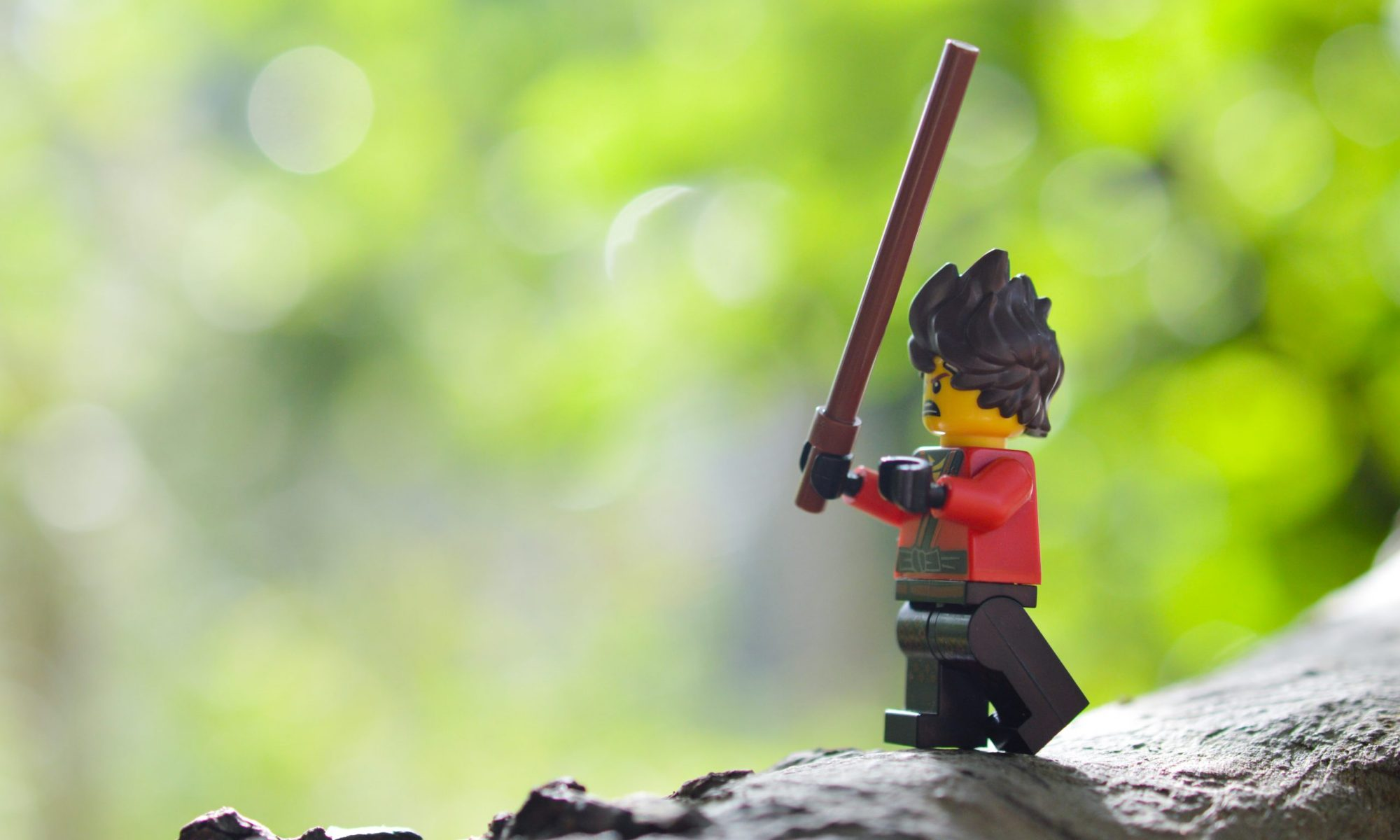 Kai doing Kendo in the garden