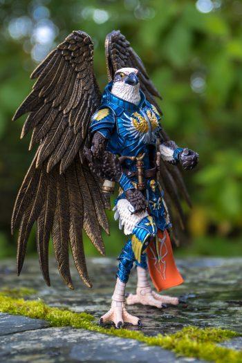 The bird - Photo credit: Julien